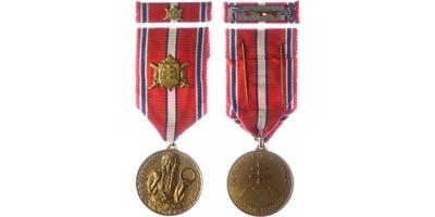 Pamětní medaile za věrnost a brannost, VM. 66a