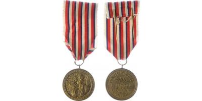 Pamětní medaile manifestačního sjezdu dobrovolců z let 1918 - 1919