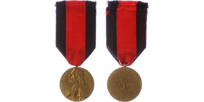 Pamětní medaile 4. střeleckého pluku Prokopa Velikého