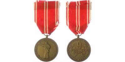 Pamětní medaile 9. střeleckého pluku K. H. Borovského