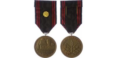 Pamětní medaile Revolučního krajského národního výboru v Táboře, VM.198
