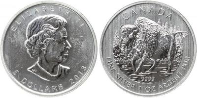 5 Dollar 2013 - Bizon, Ag 0,9999 (31,1 g)