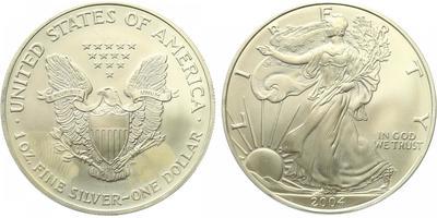 1 Dollar 2004 - Liberty, Ag 0,9993 (31,101 g), 1 Oz, pozlaceno 24 karátovým zlatem