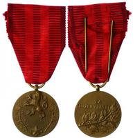 Medaile Za službu vlasti, I. vydání, VM.44-I,