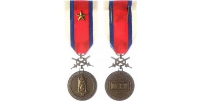 Bronzová medaile DOK Za věrné služby 1918 - 1919, VM. 76b, DOK. 6b, hvězdička na stuz