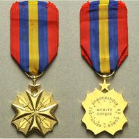 Zlatá civilní záslužná medaile, bronz zlacená