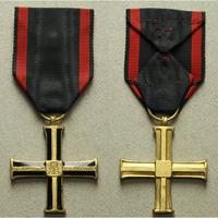 Kříž nezávislosti, bronz, smalty, WB.61-B