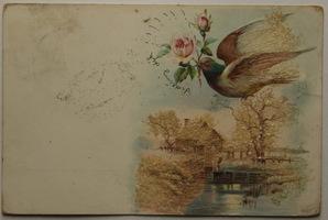 Sváteční, přání - Letící holub s růžemi