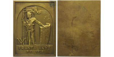 Anýž Franta, AE Plaketa 1929 - Novoročenka, 59 x 49 mm