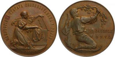 AE Medaile 1895 - Národopisná výstava Československá v Praze, Cu 55 mm (62,7 g)