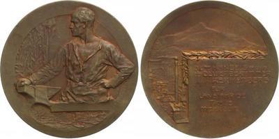 AE Medaile b.l. (Neubauer) - Cena ochodní a živnostenské komory, Br 60 mm
