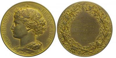 AE Medaile 1913 - Školní medaile s věnováním, Br 50 mm (56,6 g)