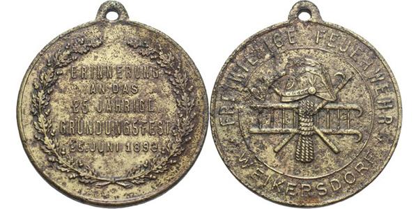 AE Medaile 1893 - Památka na oslavy 25-letého založení sboru dobrovolných hasičů. 4-