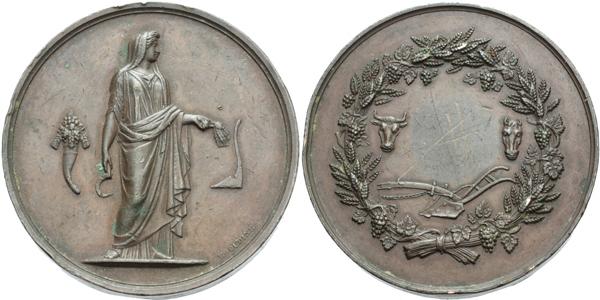AE Medaile b.l. (E. Oudine) - Zemědělská záslužná medaile, neudělená, Cu 50 mm